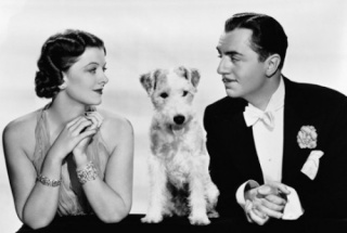 The Thin Man 21390210