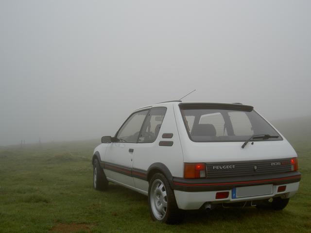 [alexos31] 205 - GTI - 1600 - Faux blanc Meije Pict5911