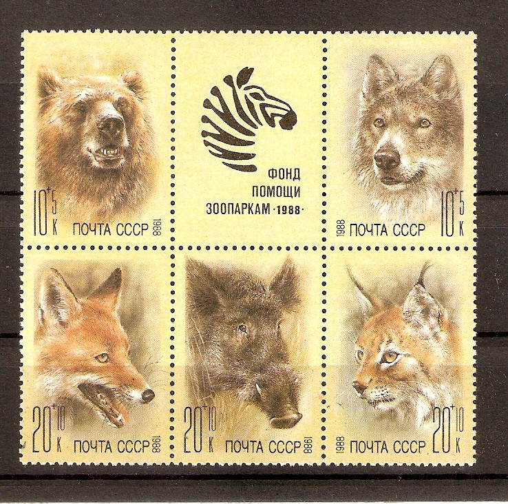 Husky`s und Wölfe  Hun_0014