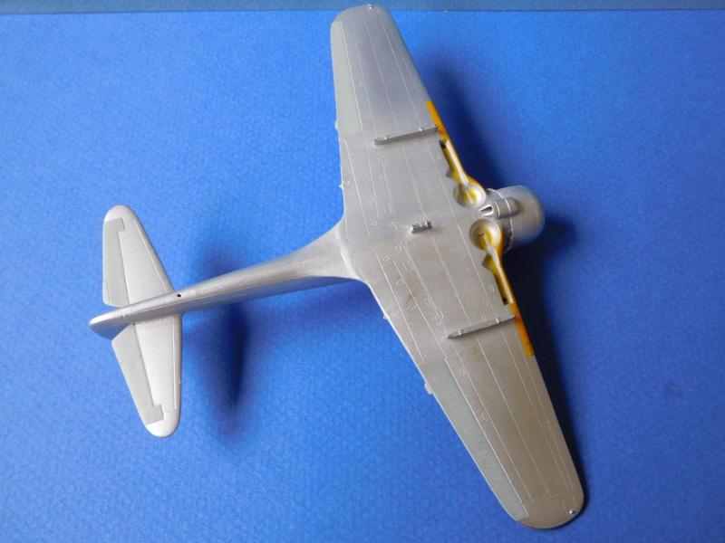 Nakajima Ki-43 III Oscar GC 1/7 Provence - Page 2 Dscn0511