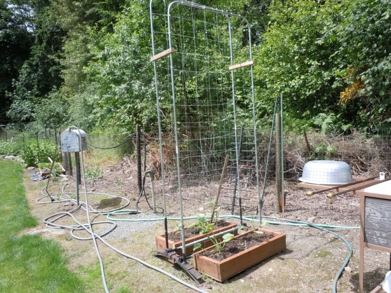 Garden sink that hooks up to your garden hose Dscn0724