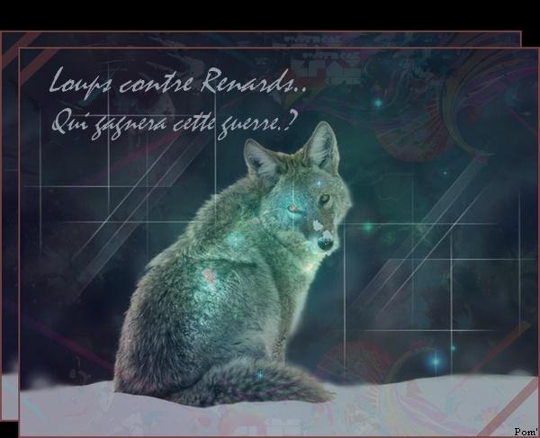 Loups vs Renards