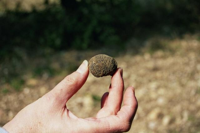Présentation : D'une pierre....... deux coups !!!!! 134_3110