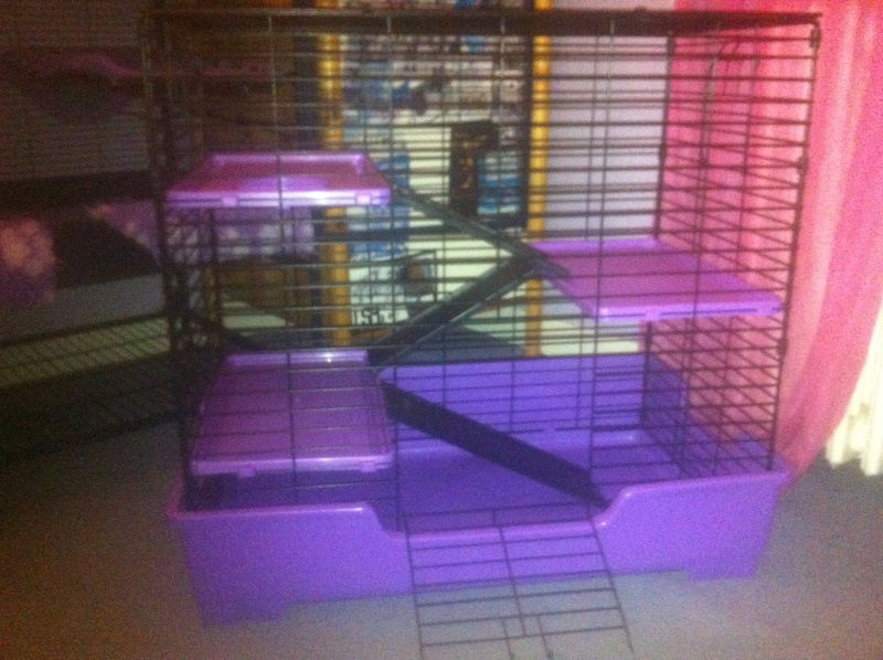 Cage Super Pet Deluxe 4 level Care Critter Home Noire/Violette Img_0810