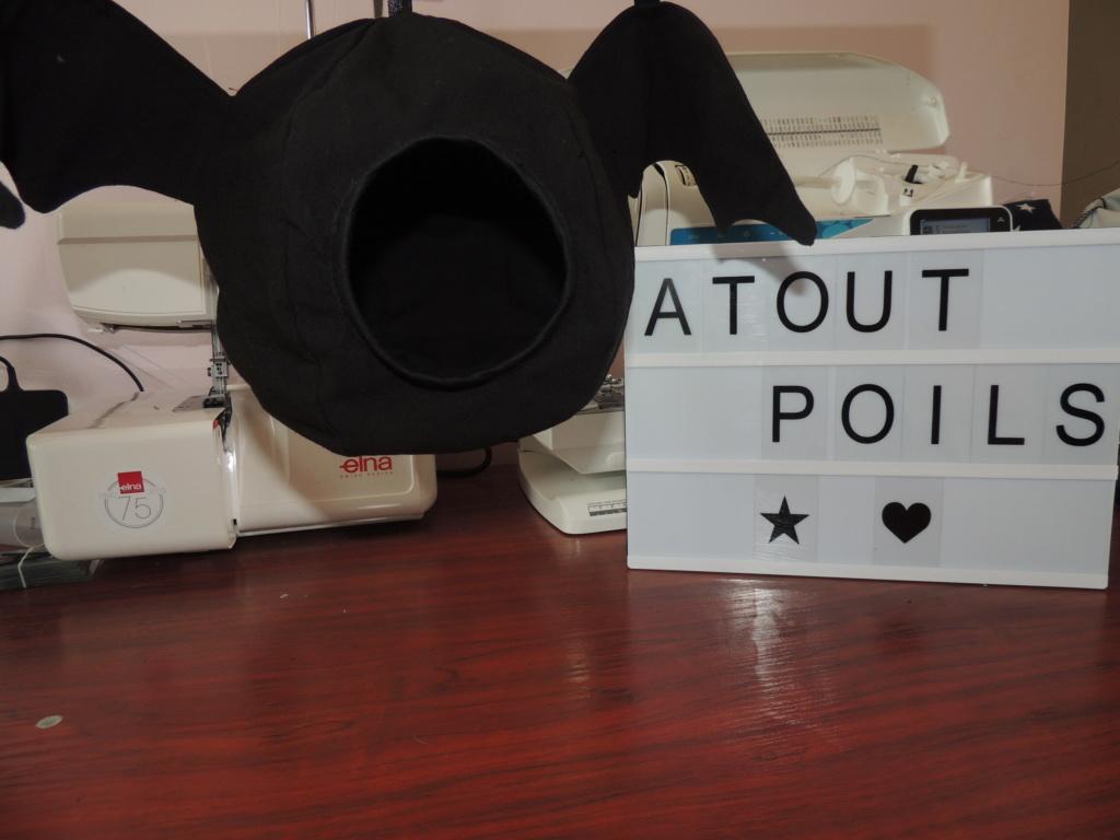 Atout Poils Dscn6312