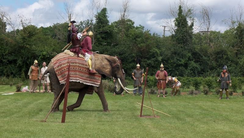 Camps avec Carthago à Drevant 100_1619