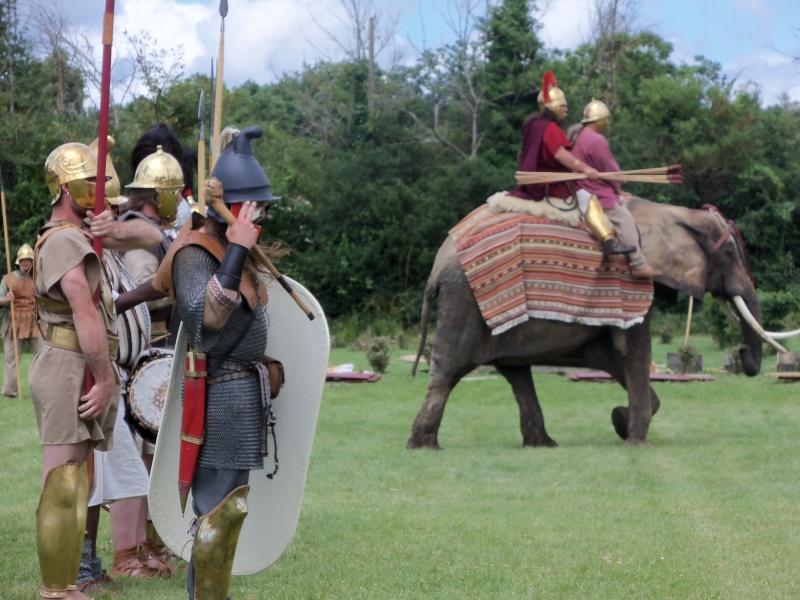 Camps avec Carthago à Drevant 100_1622