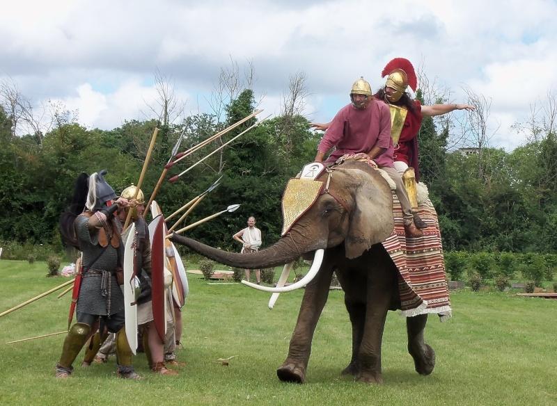 Camps avec Carthago à Drevant 100_1623