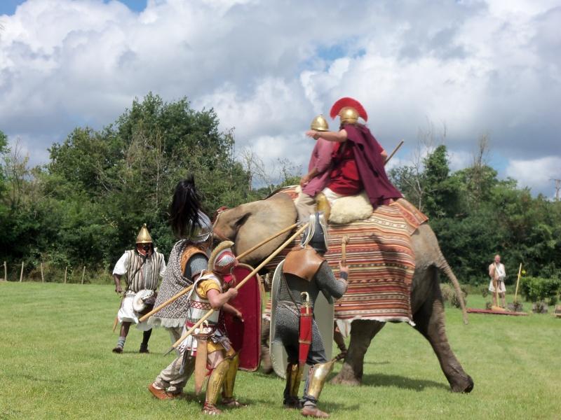 Camps avec Carthago à Drevant 100_1625