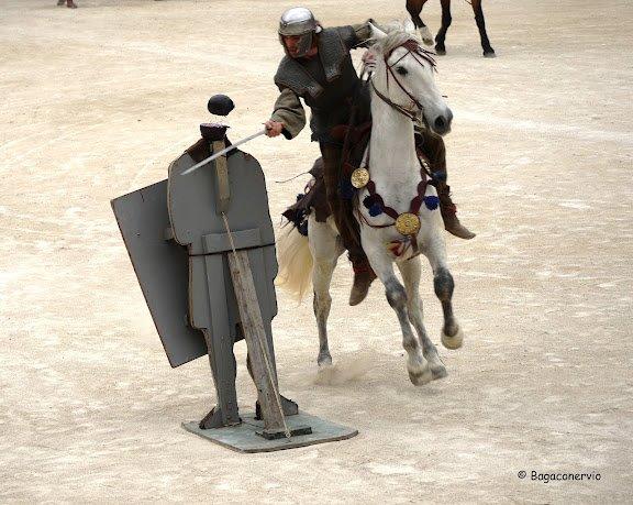 Nîmes 2012 57772910