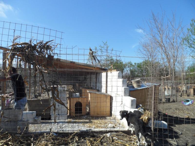 boxes - ALLEZ ON CONTINUE L'AVENTURE CONSTRUISONS LES DERNIERS  BOXES AU REFUGE DE LENUTA -  R 15_11532