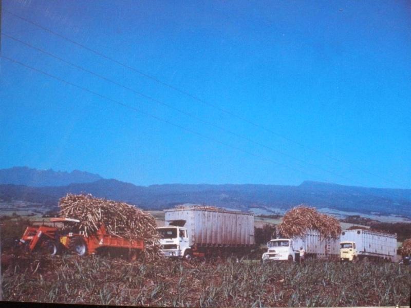 Les camions de l'Ile de la Reunion - Page 6 53108010