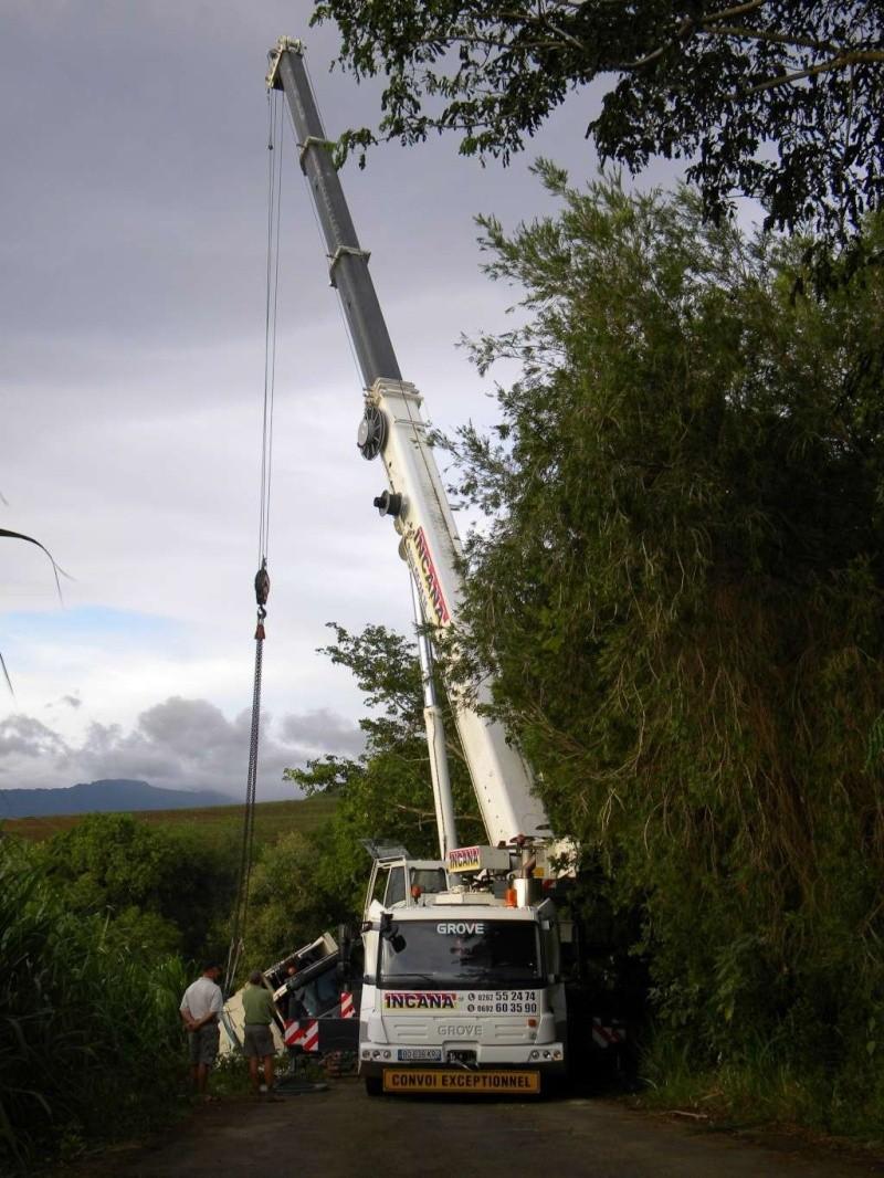 Les grues à l'île de la Réunion  - Page 2 Grove10