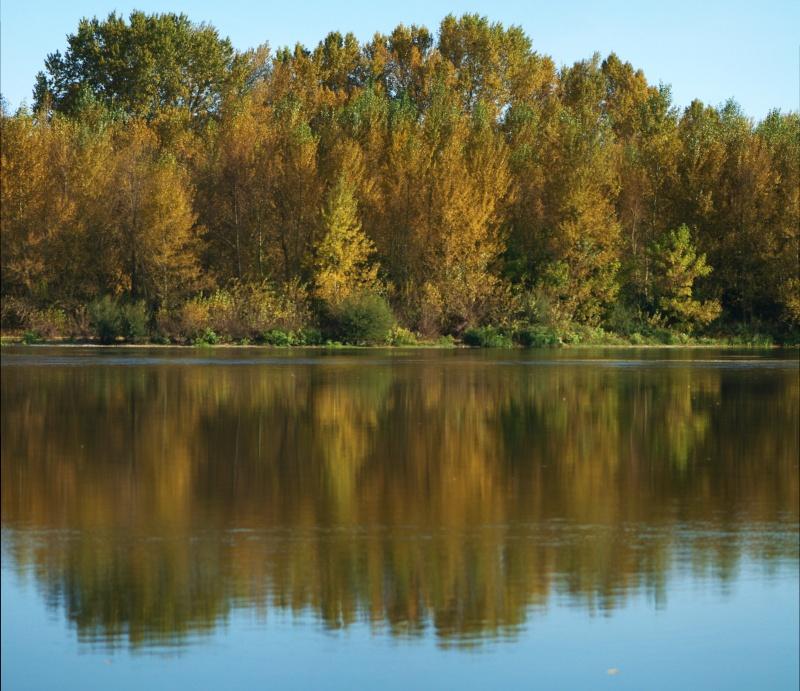 L'automne arrive! Group_11