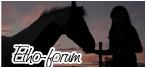 Le monde du cheval. Logo12