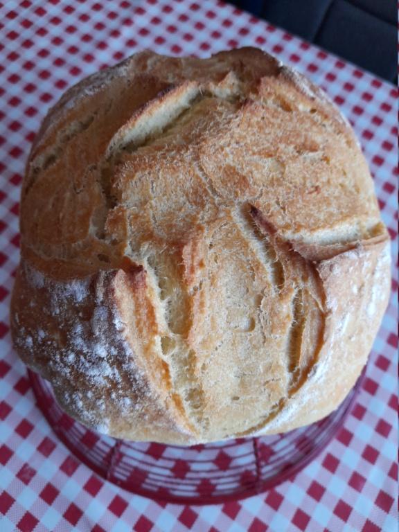 Machine à pain 20210413