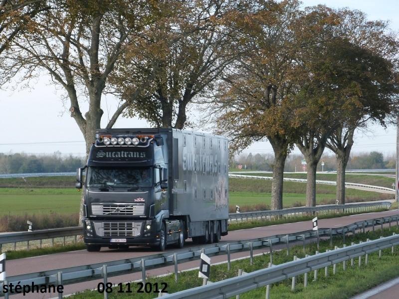 Sucatrans (Ruiselede) P1040436