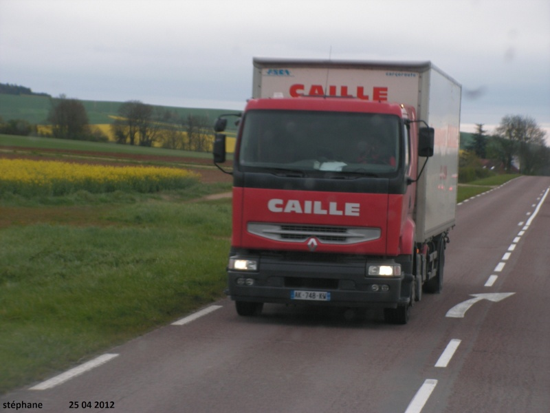 Caille (Laon 02) Pict2437