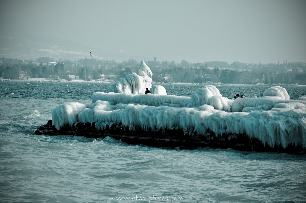 Froid Glacial  _dsc0027