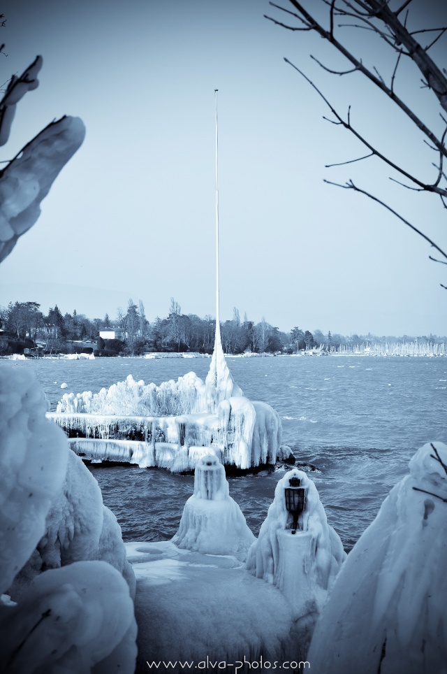 Froid Glacial  _dsc0029