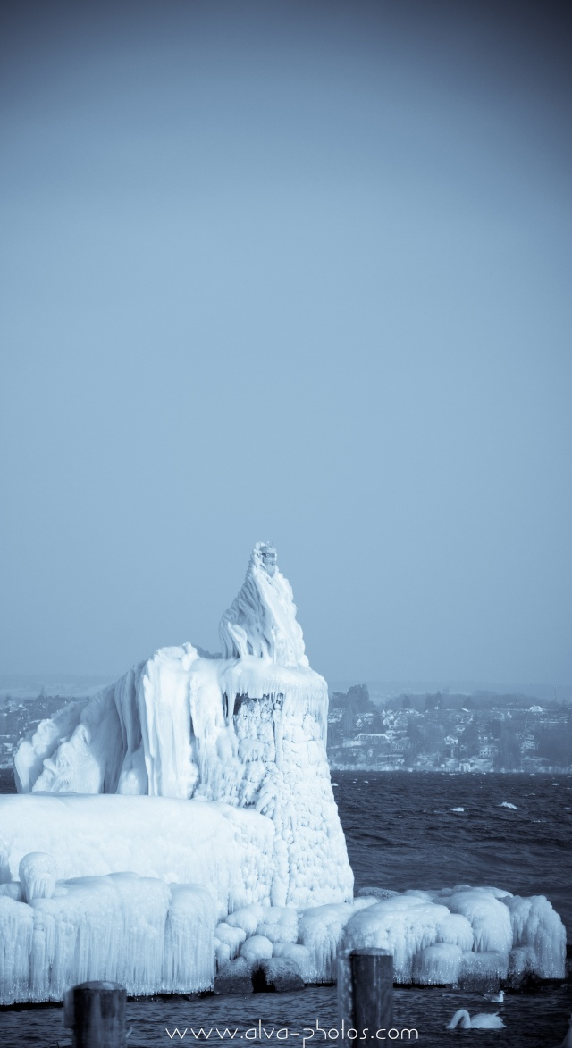 Froid Glacial  _dsc0032