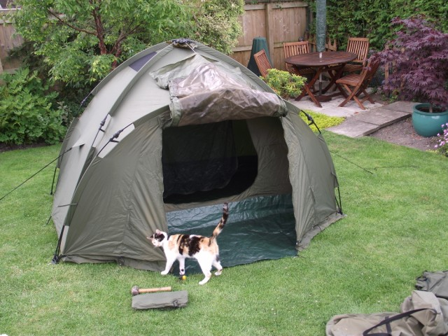 Fox Ground Tent: Easy Dome Review Tent_111