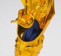 Poseidon Saint Cloth Crown (Septembre 2012) Poseid17