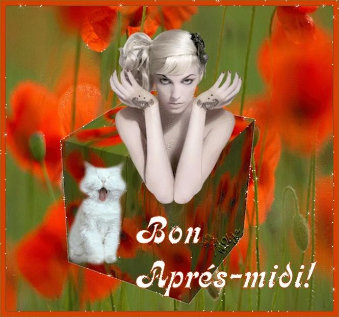 Bonne Mardi _bon_a11