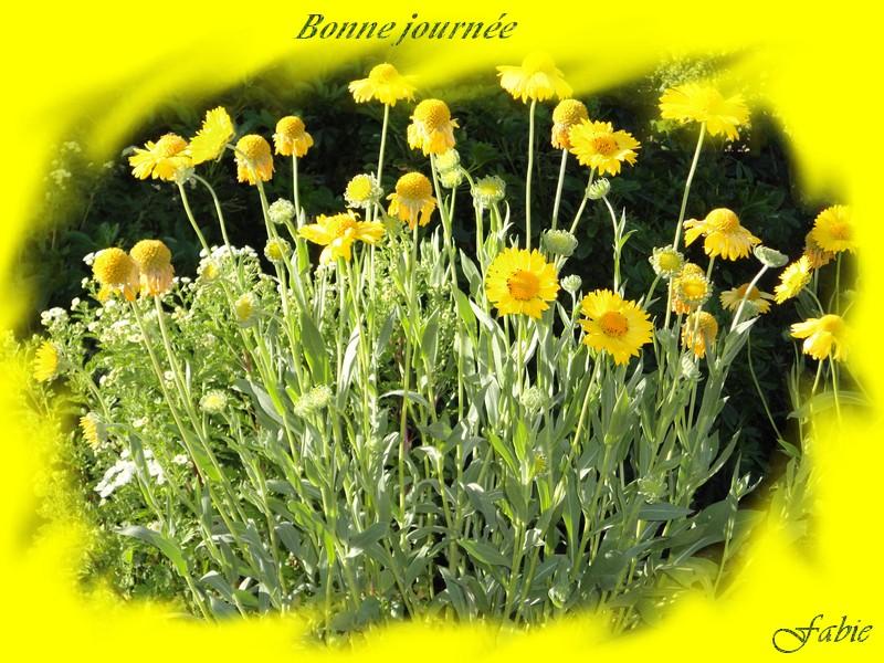 Bonne Lundi _bonne15