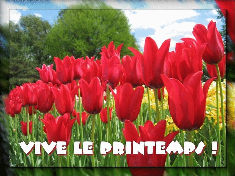 Les Saisons - Page 3 _vive_10