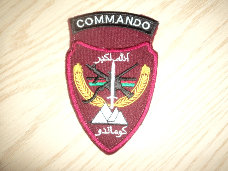 Afghan National Army Commando Patches - Page 2 Dsc01034