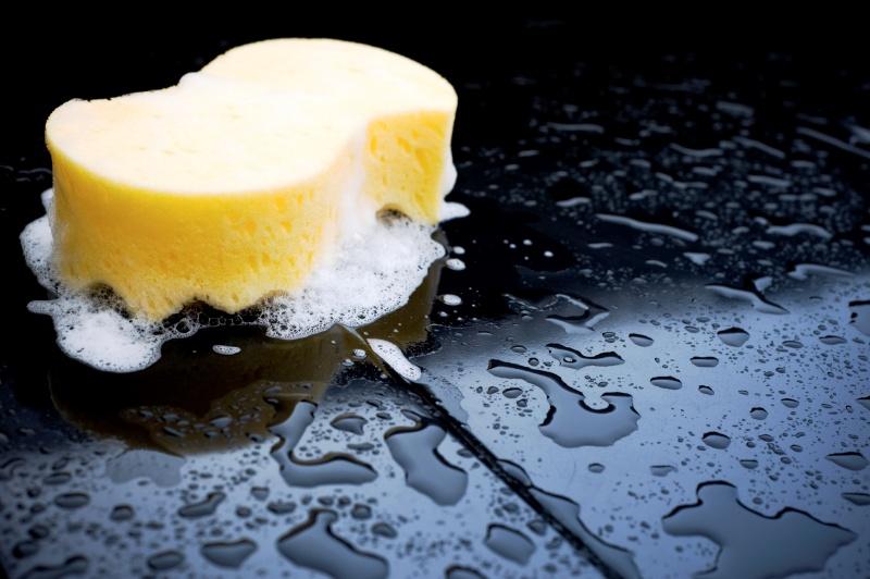 LAVAGGIO:  Prodotti, consigli, metodi e trucchi per rendere sempre piu' splendenti le nostre Lotus... Sponge10