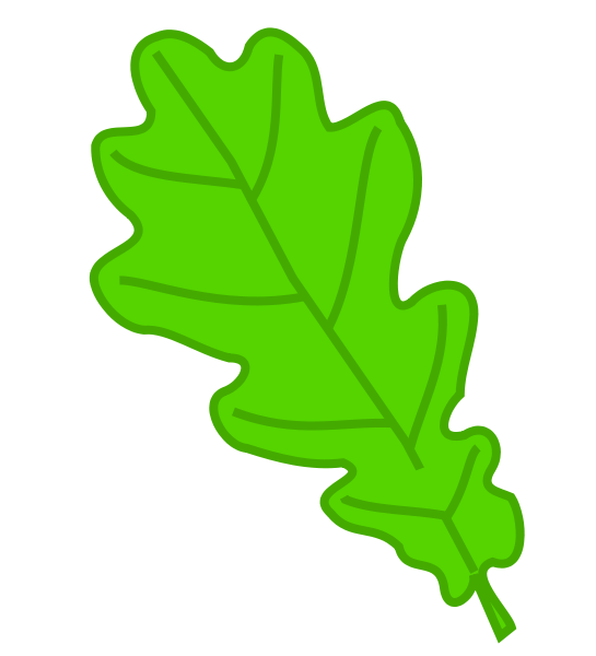 Le Chêne Feuill11