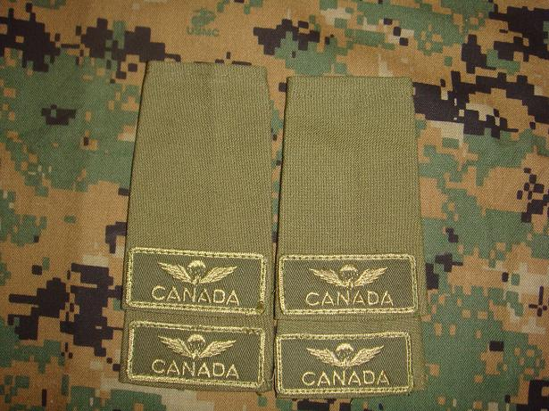 Canadian Para wings and patches help required. Cdn_ai10
