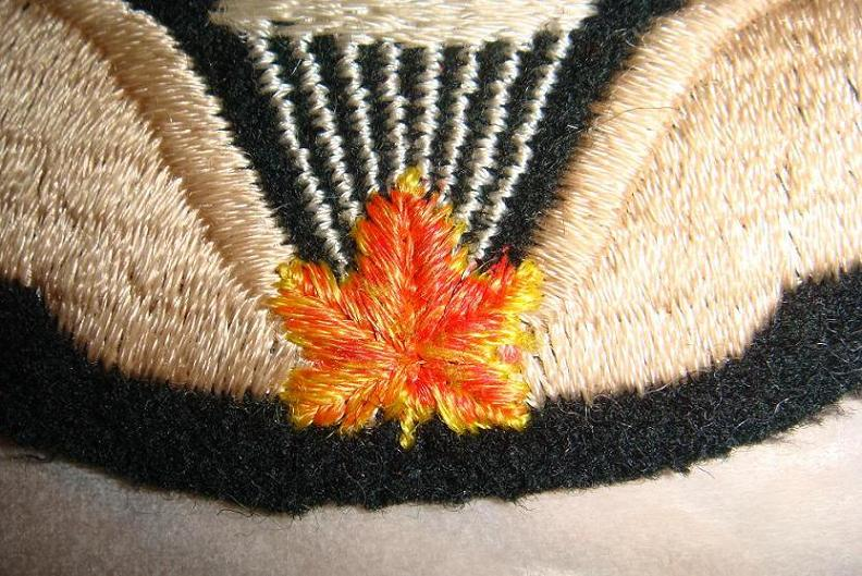 Canadian Para wings and patches help required. Pictur14