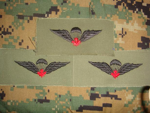 Canadian Para wings and patches help required. Us_iss10