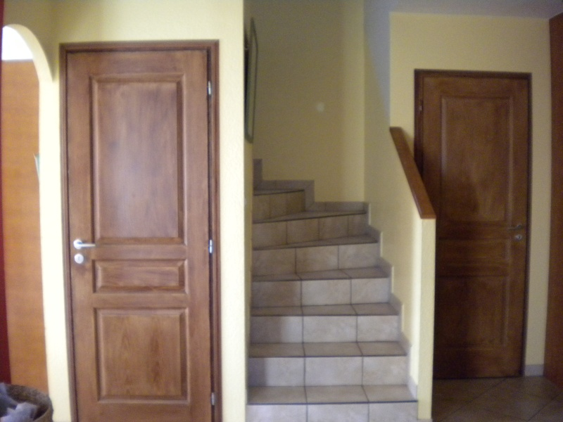 Quelle couleur pour les 2 portes du salon? Dscn5710