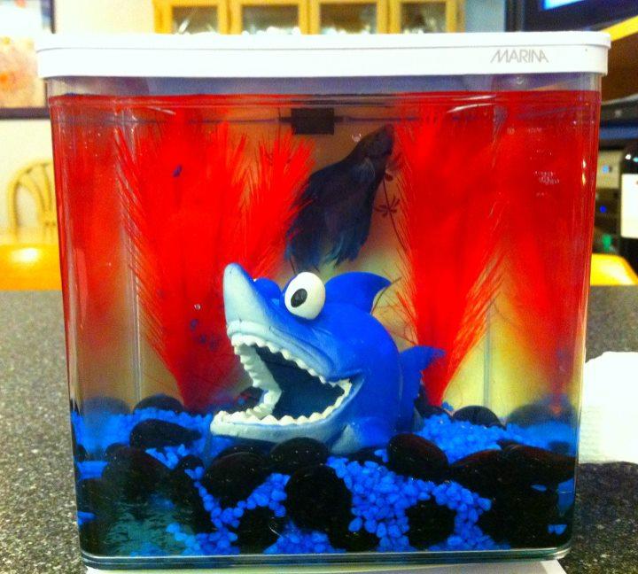 2L Marina betta fish tank 26730811
