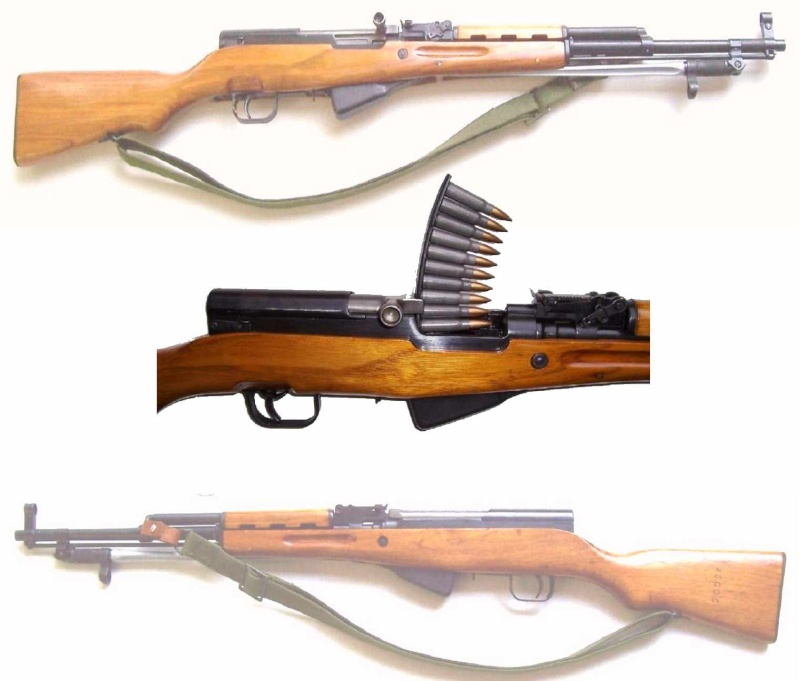 La carabine S.K.S. 46 Blanc_10