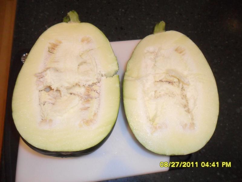 Zucchini or pumpkin??? Gina_s17