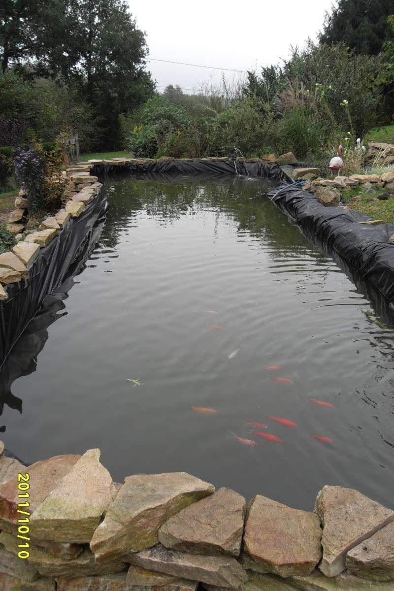 Obligé de changer la bâche du bassin..... Dur dur!!! Sdc15115