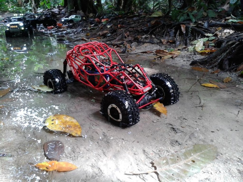 liew SHOWTIME southern rock buggy built 20121215