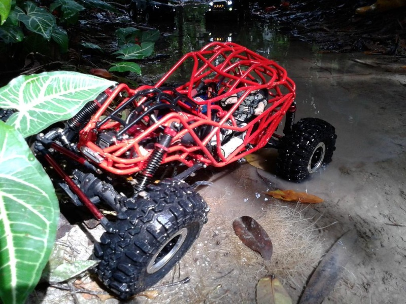 liew SHOWTIME southern rock buggy built 20121216