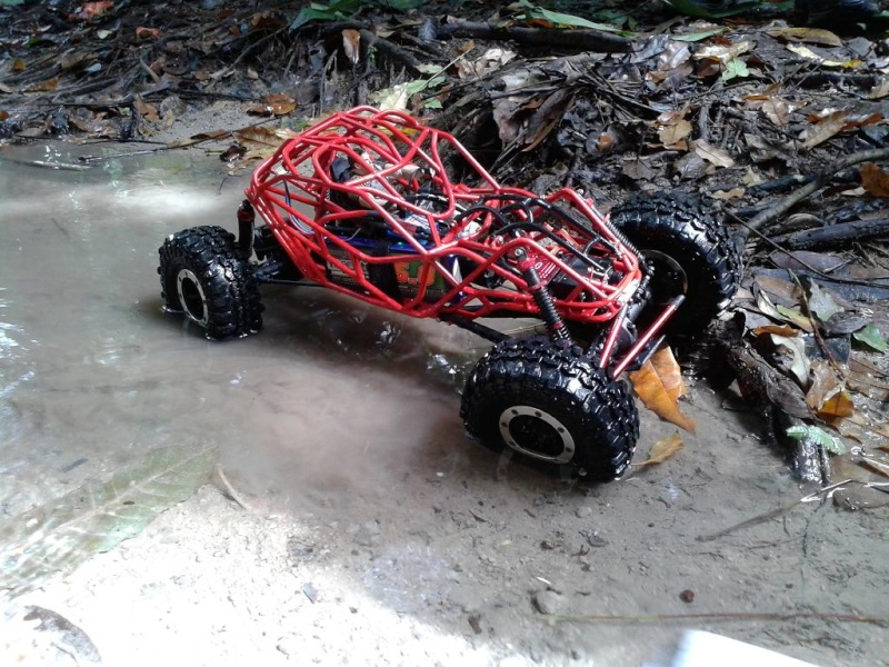 liew SHOWTIME southern rock buggy built 20121217