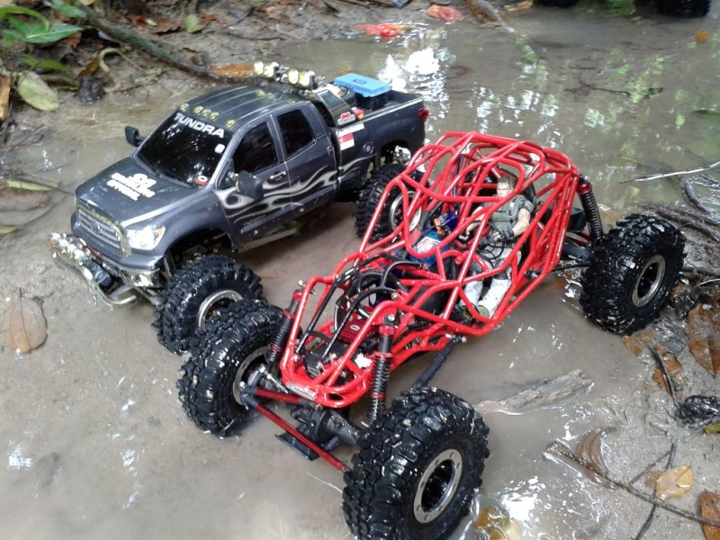 liew SHOWTIME southern rock buggy built 20121219