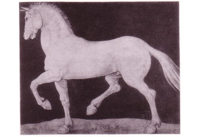 Melencolia I (Albrecht Dürer) - Page 6 Forum_10