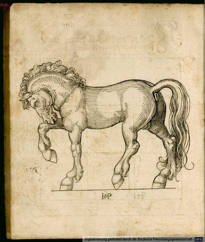 Melencolia I (Albrecht Dürer) - Page 6 Wasser13