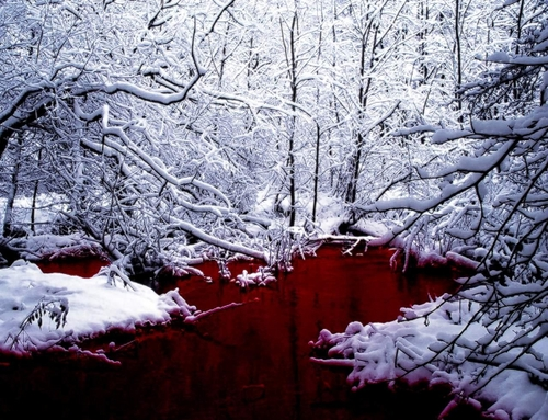 SCP-354-The Red Pool Medium10