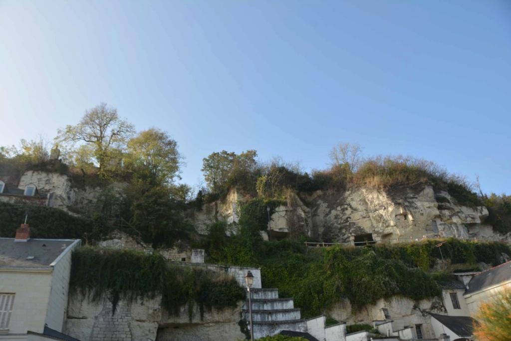 Saumur et son cadre noir Dsc_7811