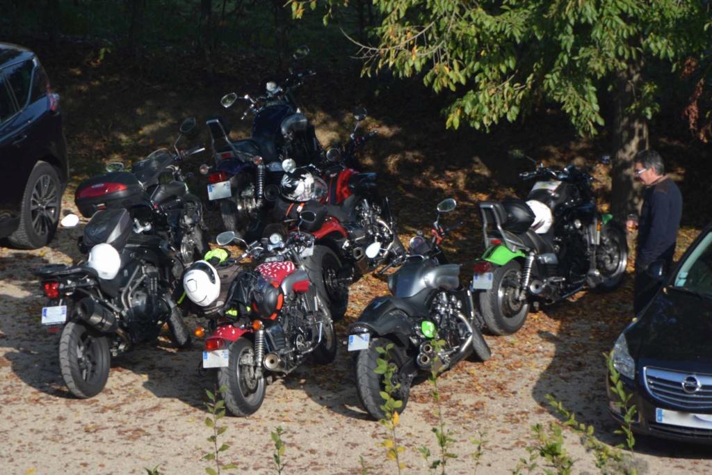 Saumur et son cadre noir Dsc_7825